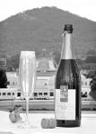 centenary_wine
