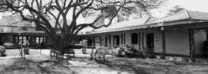 Gorman House