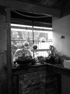 Sweet Bones 2 - Shelf Garden