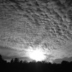 Dawn-1